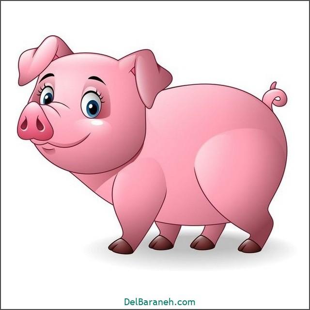 نقاشی خوک برای بچه ها (۲)