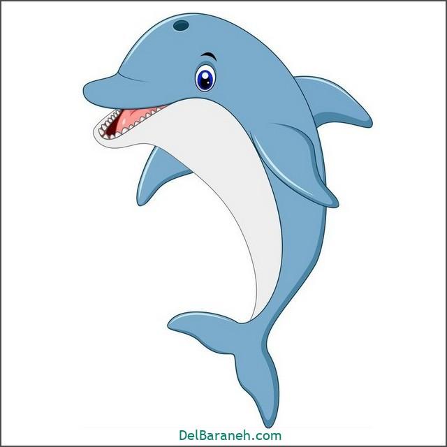 نقاشی دلفین برای بچه ها (۱)