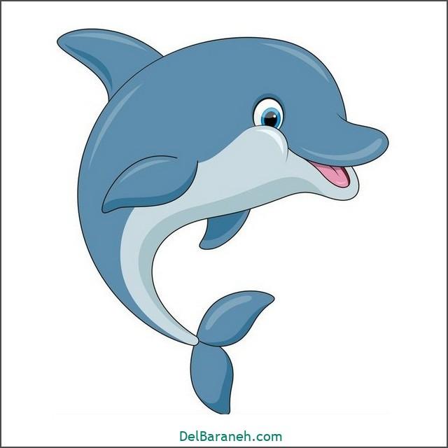 نقاشی دلفین برای بچه ها (۲)