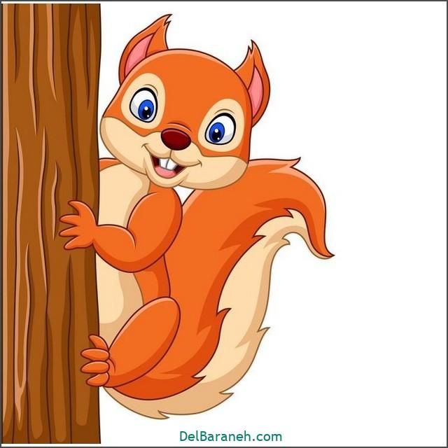 نقاشی سنجاب برای بچه ها (۲)