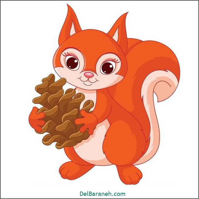 نقاشی سنجاب برای بچه ها (۳)