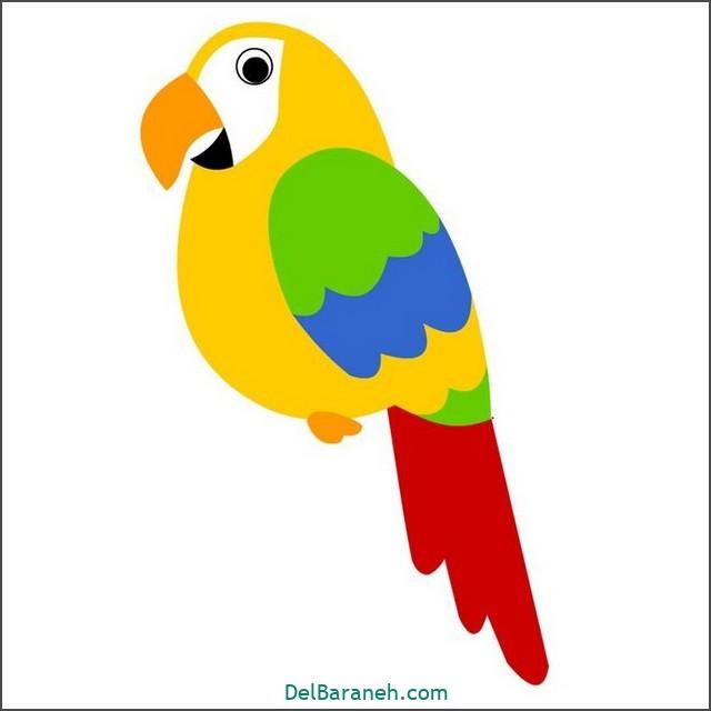 نقاشی طوطی برای بچه ها (۱)