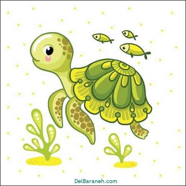 نقاشی لاک پشت برای بچه ها (۳)