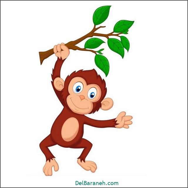 نقاشی میمون برای بچه ها (۱)