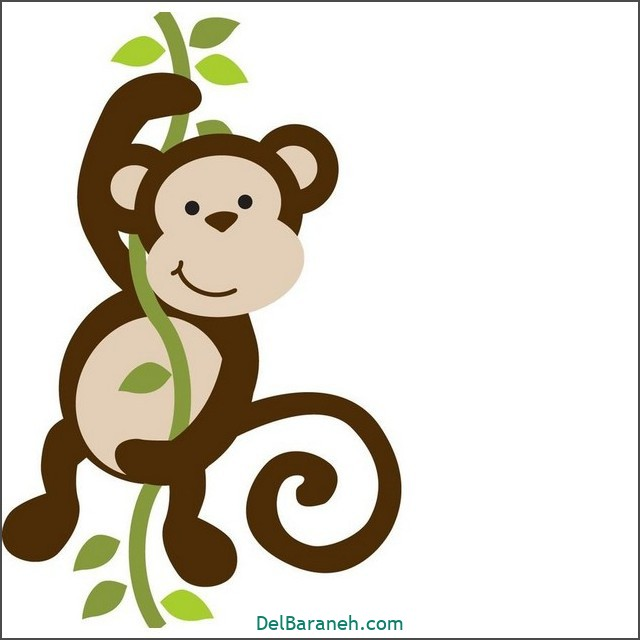 نقاشی میمون برای بچه ها (۲)