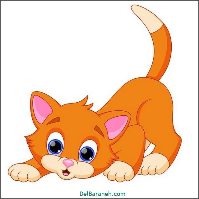نقاشی گربه برای بچه ها (۲)