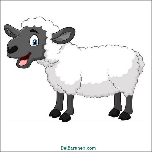 نقاشی گوسفند برای بچه ها (۱)