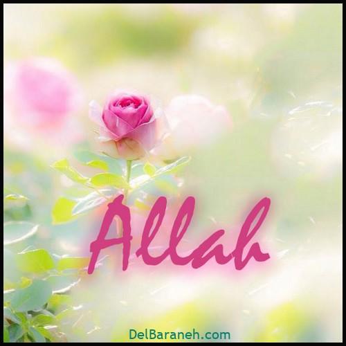 پروفایل الله (۴)