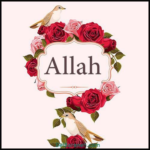پروفایل الله (۷)