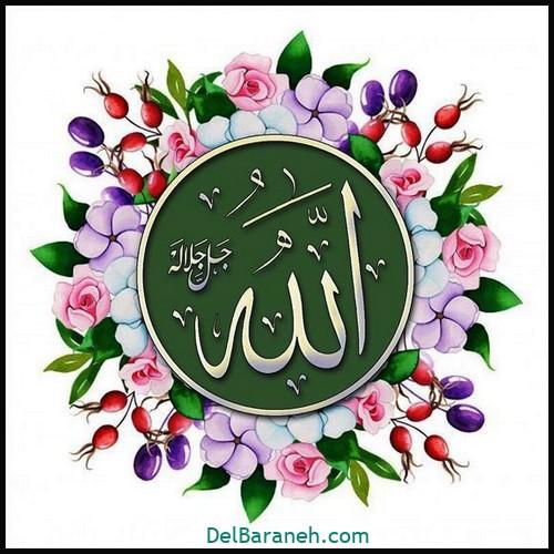پروفایل کلمه الله (۳)