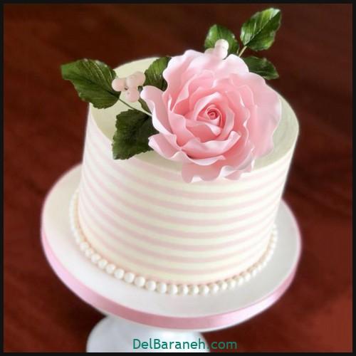 کیک تولد دخترانه (۲۷)