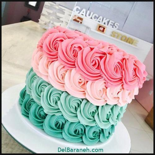 کیک تولد دخترانه (۴۷)