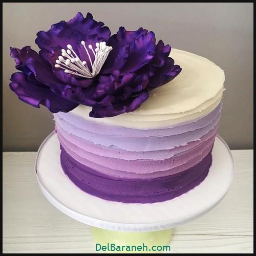 کیک تولد دخترانه (۵)