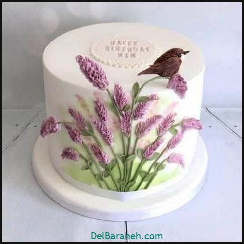 کیک تولد دخترونه (۱۱)