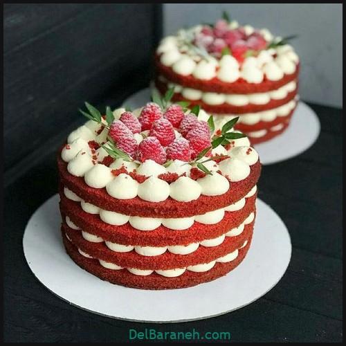 کیک تولد دخترونه (۳۱)