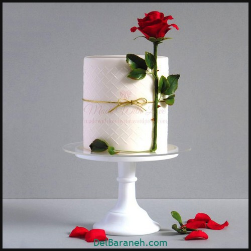 کیک تولد دخترونه (۳۹)