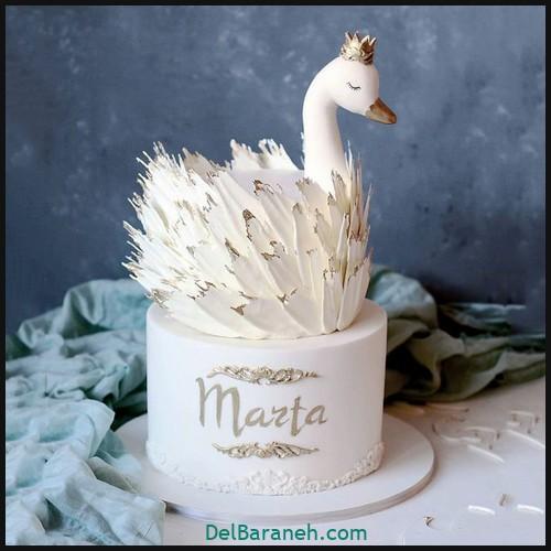 کیک تولد دخترونه (۴)