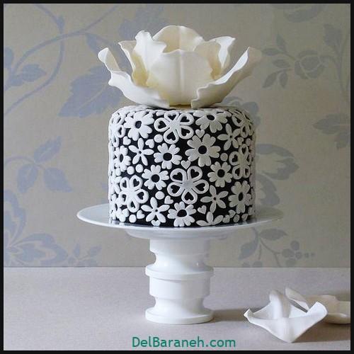 کیک تولد دخترونه (۴۱)