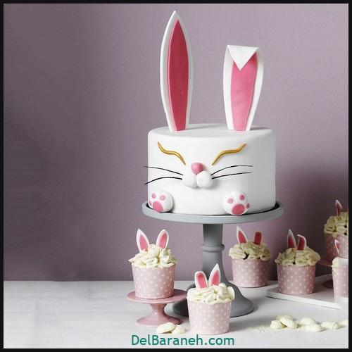 کیک تولد دخترونه (۶)