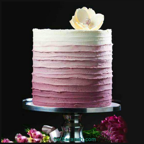 کیک تولد دخترونه (۷)