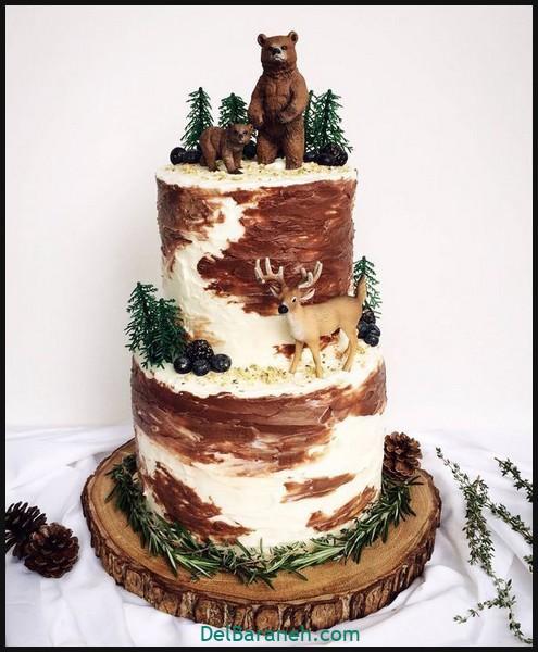 کیک تولد مردانه (۵۴)