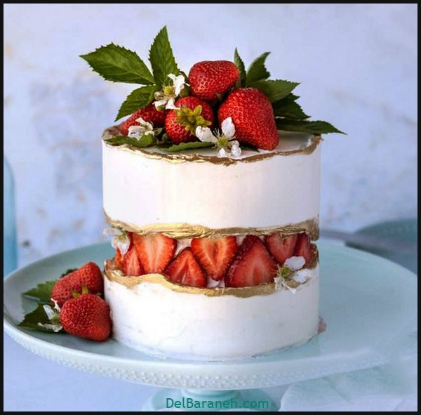 کیک تولد مردونه (۶)