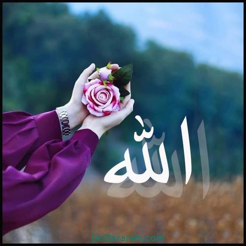allah (3)
