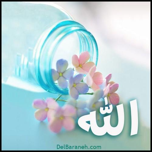 allah (5)