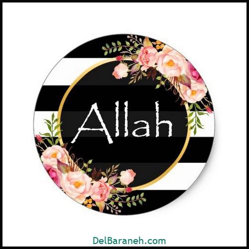 allah (8)
