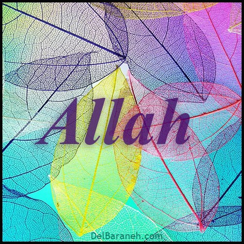 allah picture (8)
