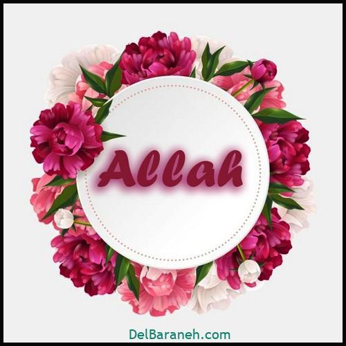 allah profile (3)