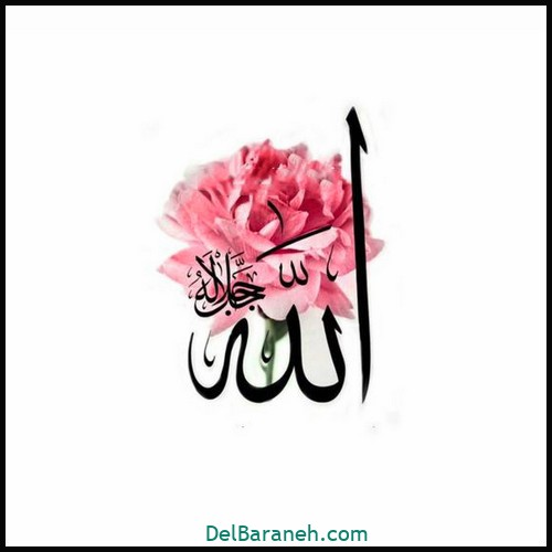 allah profile (6)