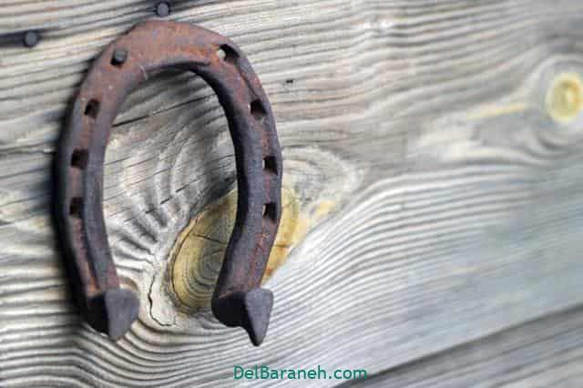 تعبیر خواب پیدا کردن نعل اسب