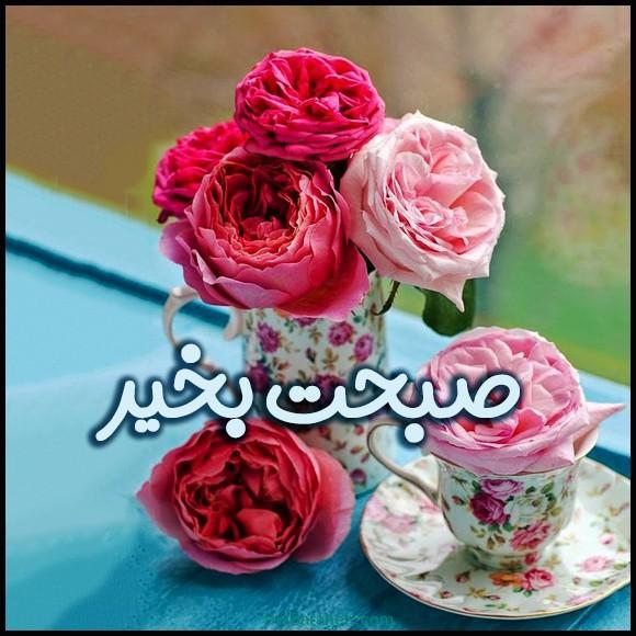 عکس صبح بخیر و گل